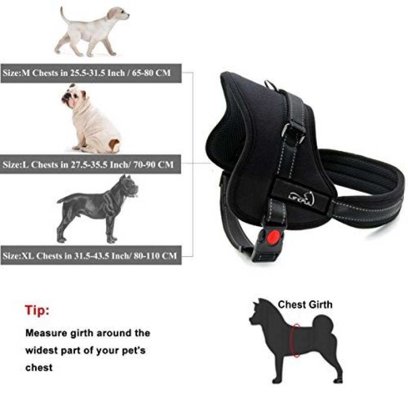des harnais pour chien confortables prix imbattables tout pour mon chien. Black Bedroom Furniture Sets. Home Design Ideas