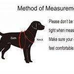 MIDWEC Harnais ajustable pour chien de première qualité Nouveau design anti traction, Intérieur tissu doux, pour animaux domestiques, petit chien, chien moyen, grand chien, existe en 4 tailles de la m TOP 6 image 1 produit