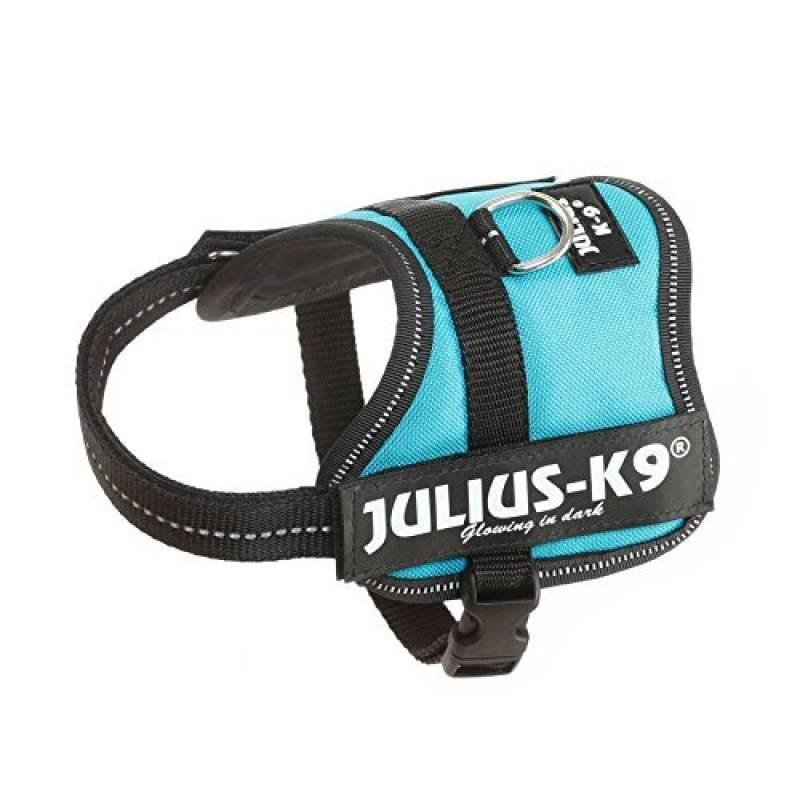 Trixie Harnais pour Chien Power Julius-k9 Baby Aigue Marine 2/XS–S 33–45 cm de la marque Trixie TOP 6 image 0 produit