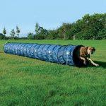 Agilité Tunnel d'activité pour chien–Créer un programme Fitness varié pour votre chien à garder avec lui et en bonne santé de la marque Trixie TOP 5 image 0 produit