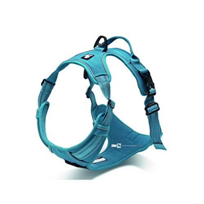 Avant Gamme Design New 2016True Love Harnais pour chien, Your. anti-étranglements 3m couture réfléchissante pour une meilleure visibilité la nuit de la marque Elizabeth Arden TOP 10 image 0 produit