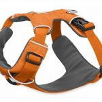 Ruffwear Front Range 17 Dog Harness Medium Orange Poppy de la marque Ruffwear TOP 5 image 2 produit