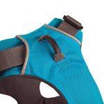 Ruffwear Front Range Harnais pour Chien Pacifique Bleu M de la marque Ruffwear TOP 14 image 4 produit