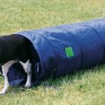 Trixie Dog Activity Tunnel Agilité 40 cm / 2 m Bleu de la marque Trixie TOP 9 image 1 produit