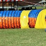 """Tunnel agility """"Tournoi""""selon les normes FCI Ø 60cm - 2 sacs de lestages déjà inclus de la marque Callieway® TOP 3 image 5 produit"""