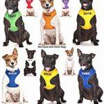 Dexil Elite Gamme Luxe Colliers pour chiens en néoprène rembourré réglable ultra résistant S/M/L/XL/XXL de la marque Dexil TOP 3 image 6 produit