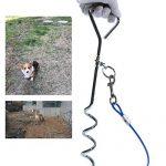Chien de serrage de câble pour chien Tieout Piquet en acier inoxydable, et 10m 360° Laisse et attache en spirale domestiques complet pour extérieur, jardin et TOP 2 image 5 produit