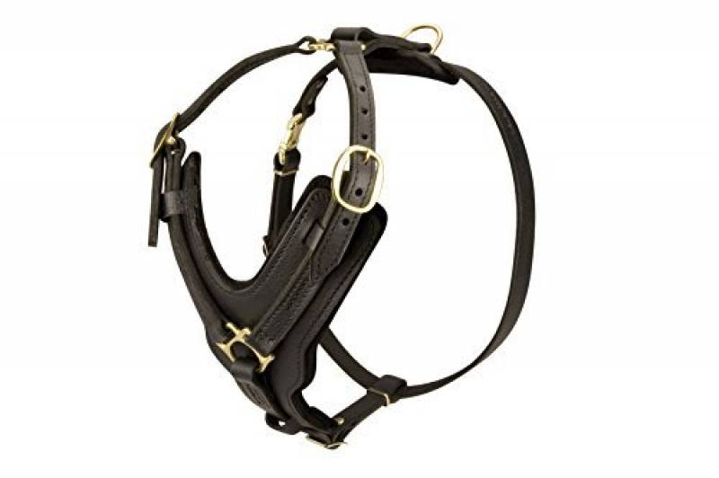 Multifonctions Harnais pour chien Berger allemand en cuir réglable avec poitrine en Y–Taille M de la marque Exclusive Dog Harnesses TOP 7 image 0 produit