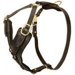 Multifonctions Harnais pour chien Berger allemand en cuir réglable avec poitrine en Y–Taille M de la marque Exclusive Dog Harnesses TOP 7 image 5 produit