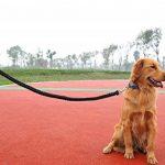 La Vogue Laisse Corde Pour Chien 115cm En Nylon Tressé Traction Animaux Promenade Course de la marque La Vogue TOP 2 image 3 produit