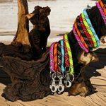 Laisse nylon corde 2 m noire largeur 13 mm environ pour chien/Zolux de la marque Zolux TOP 4 image 0 produit