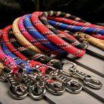 Laisse nylon corde 2 m noire largeur 13 mm environ pour chien/Zolux de la marque Zolux TOP 4 image 1 produit