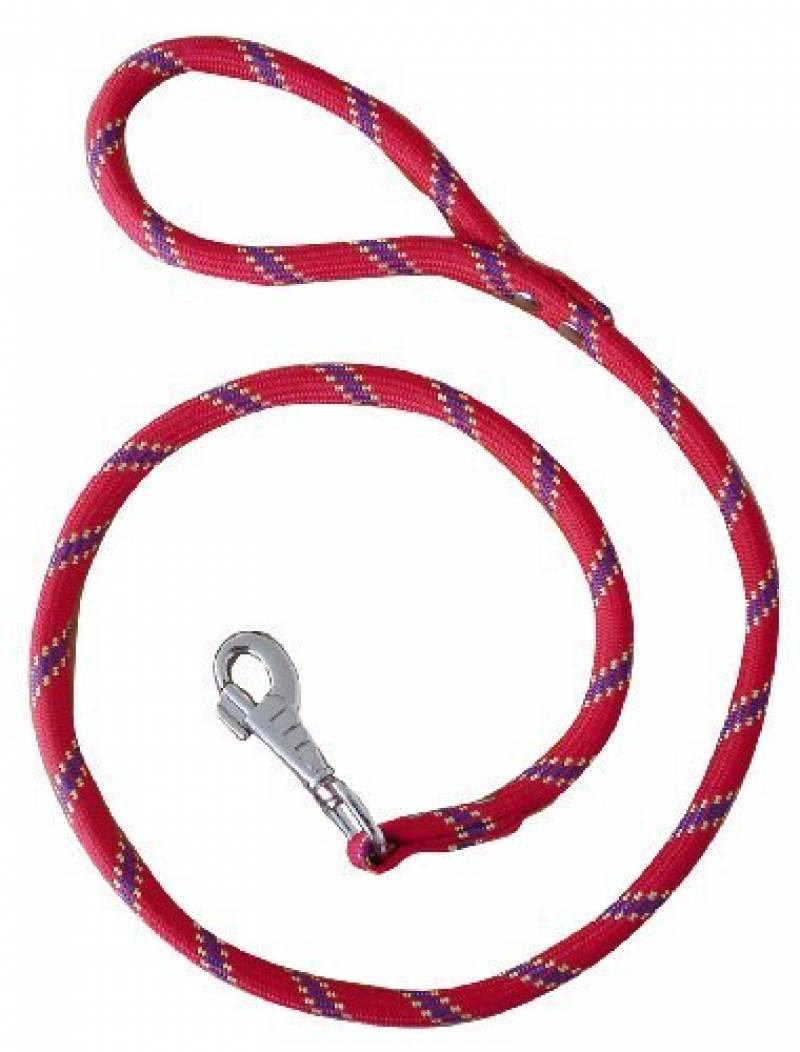 Laisse nylon corde 3 m rouge largeur 13 mm environ pour chien/Zolux de la marque Zolux TOP 1 image 0 produit