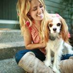 PetSafe Système de clôture anti-fugue avec fil In-Ground Fence de luxe pour petits chiens de la marque PetSafe TOP 5 image 2 produit
