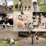 Poppypet Acier Inoxydable Mains Vélo Chiens Gratuit Laisse, Vélo de marche pour chien, Walk & Ride with Animaux plomb Cycle Laisses animaux Entraînement sportif TOP 11 image 5 produit