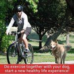 Poppypet Acier Inoxydable Mains Vélo Chiens Gratuit Laisse, Vélo de marche pour chien, Walk & Ride with Animaux plomb Cycle Laisses animaux Entraînement sportif TOP 11 image 6 produit
