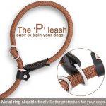 Poppypet Laisse Rond en Nylon pour Chien Lasso ajustable avec collier pour Chien Rond en nylon corde de traction de chien Marron de la marque Poppypet TOP 3 image 2 produit