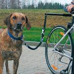 T Tocas Chiens Leash de vélos en acier inoxydable - Walk & Promenade avec Animaux Laisses mains libres de cycle Pet Lead Entraînement sportif, poignée de silico TOP 12 image 1 produit