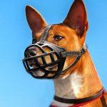 Berry Panier pour chien Muselière pour mordre aboiements souple rembourrée réglable Muselière cage 6tailles de la marque Berry TOP 5 image 5 produit